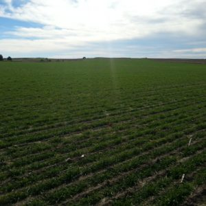 pasture and dryland farm for sale, land in nebraska, farm for sale