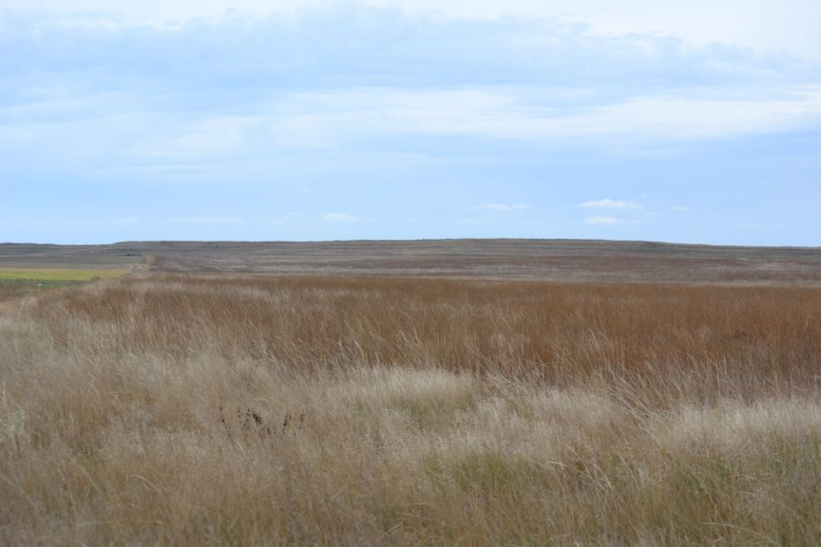 Nebraska CRP Farmland for Sale