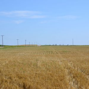 Growing crops TBD at time of year property sells