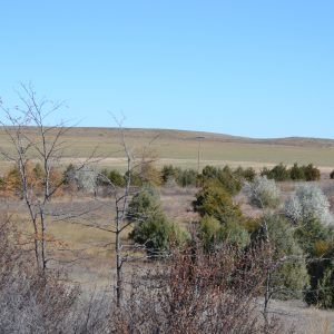 CRP in Nebraska for sale