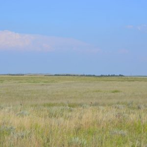Nebraska Land for Sale