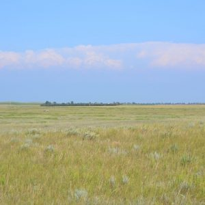 Hunting Properties for Sale