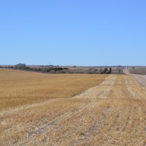 Land, trees and farm in Nebraska for sale
