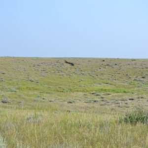 CRP Land in Nebraska for Sale