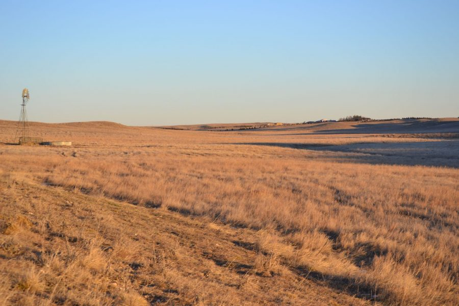 Pasture Land in Nebraska for Sale