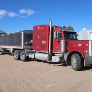 Lot 31: 2000 – Peterbilt Semi Tractor another view