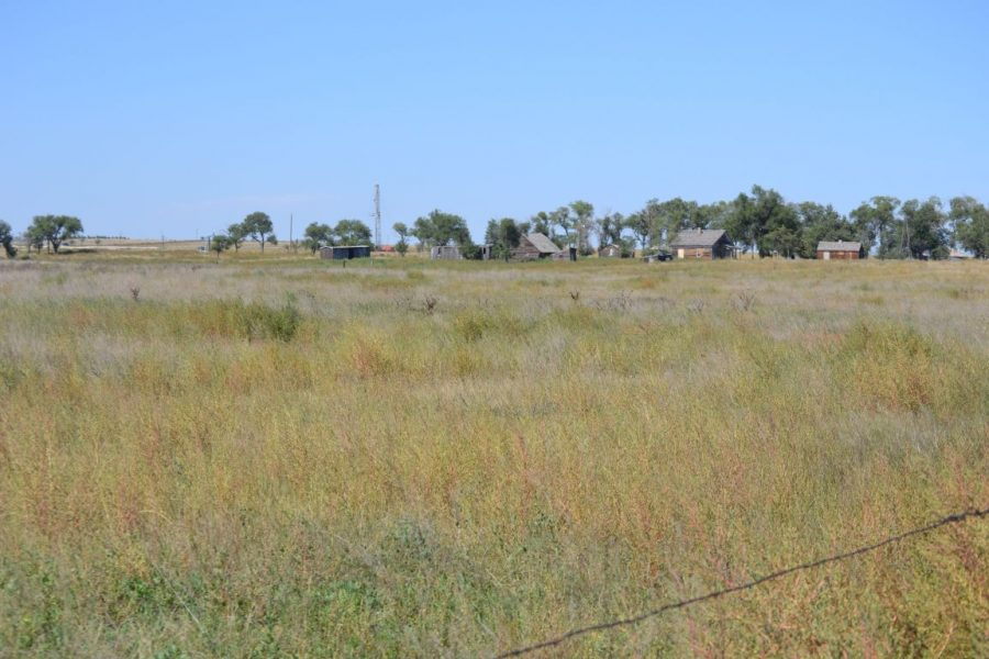 Omel Pasture & CRP in Logan County, CO