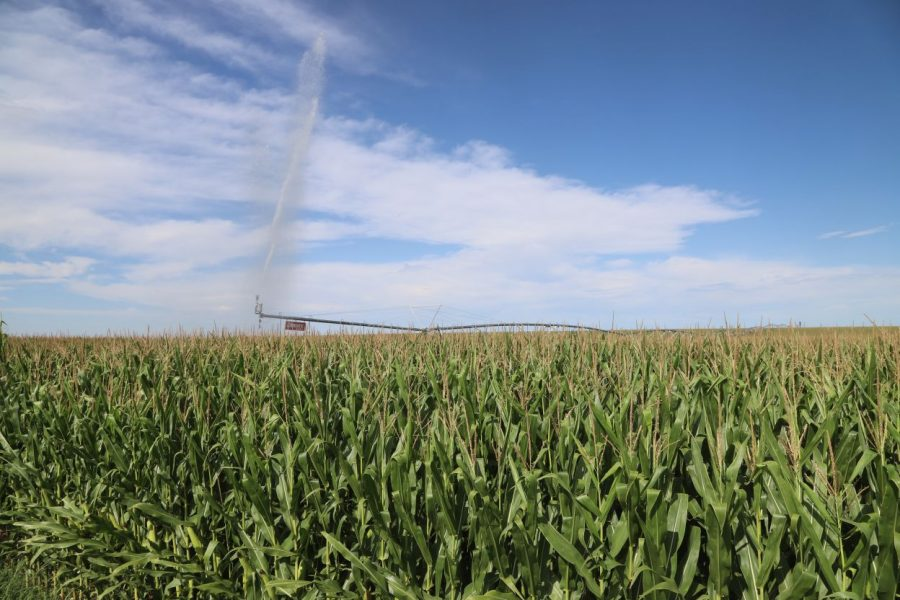 Phillips County Stateline Pivot Irr Land Auction
