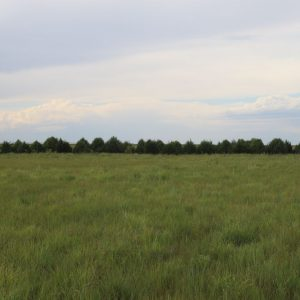 Phillips Cty Stateline Pivot Irr Land Auctions