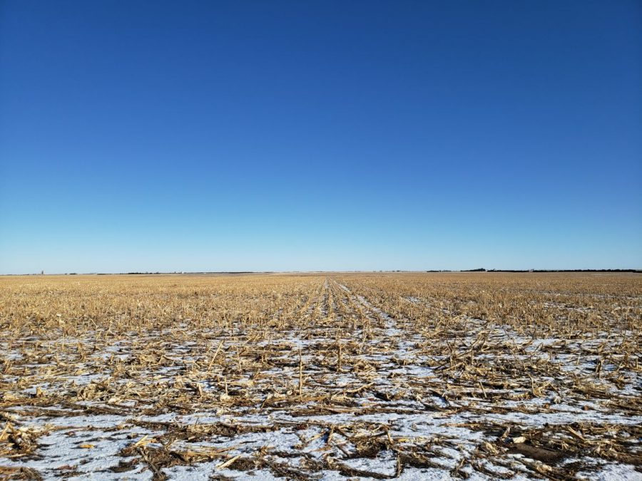 151.7 ac of dry cropland in Phillips County w/142.5+/- ac dry cropland, 9.2+/- ac grass/roads; Desirable location SW of Holyoke, CO. Immediate possession for 2020 crop year.