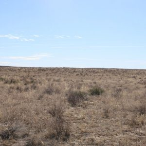 Parcel #2B - View of pasture to SW