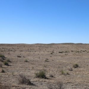 Parcel #2B - View of pasture to south