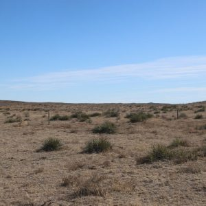 Parcel #2B - view of pasture to SE