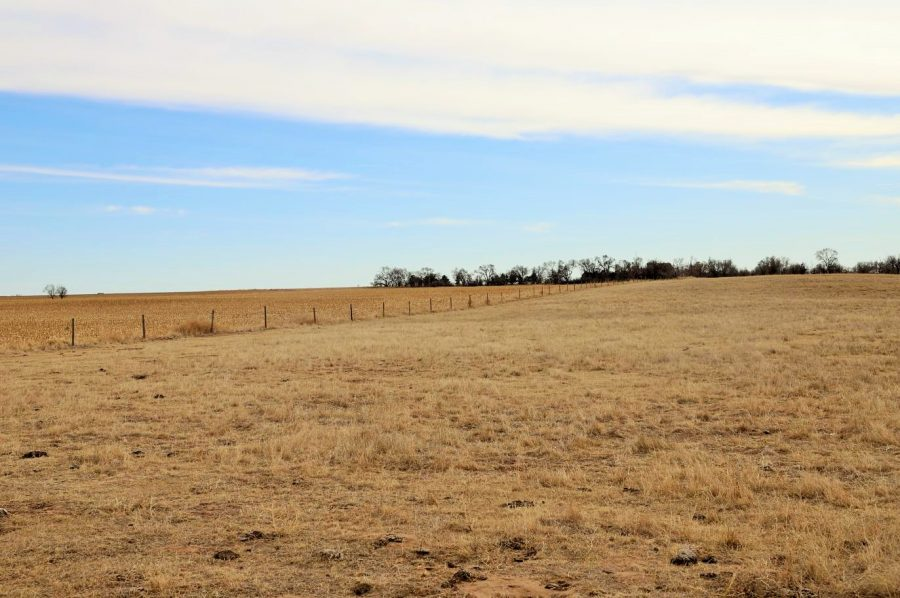 View of pasture and dryland from North