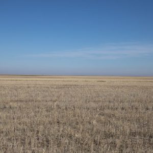 160+/- total acres