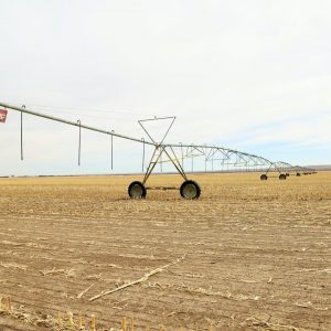Parcel #1 - north 7 tower Zimmatic pivot