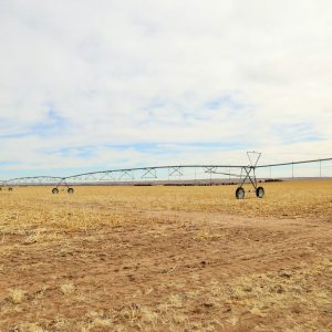 Parcel #2 - View of 7 towner Zimmatic pivot