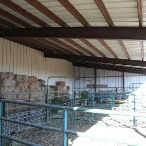 Improvements - shop - south side - livestock protection