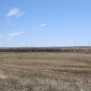 View from pasture across valley