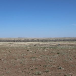 East Pivot - View from N to SW