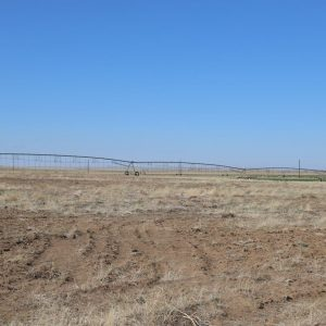 East Pivot - View from S to NW
