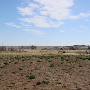 West pivot - view from west to east