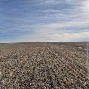 Parcel #3 - View of wheat stubble from north to south