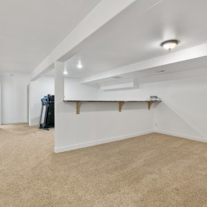 Downstairs Living/Rec Room