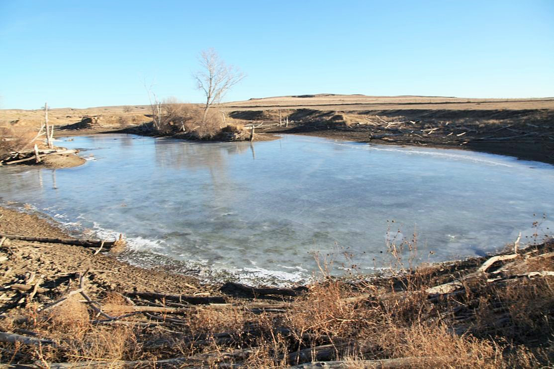 2---pond-in-SW-of-pasture.jpg