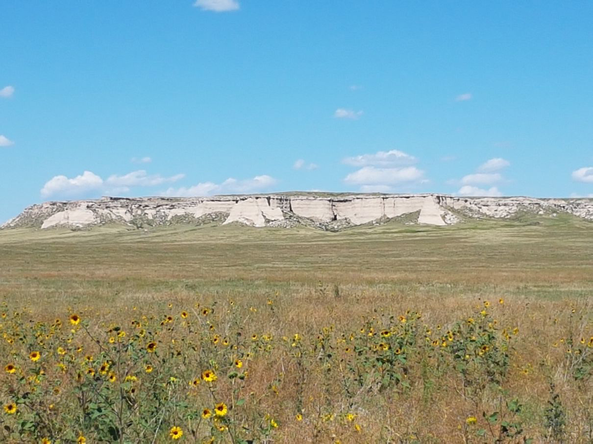 Steinruck CRP, Weld County, CO , bluffs, colorado land for sale