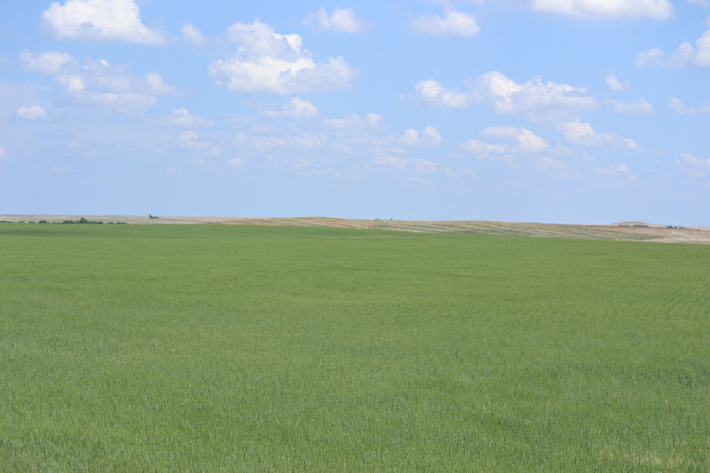 Beautiful vistas from this Nebraska land for sale