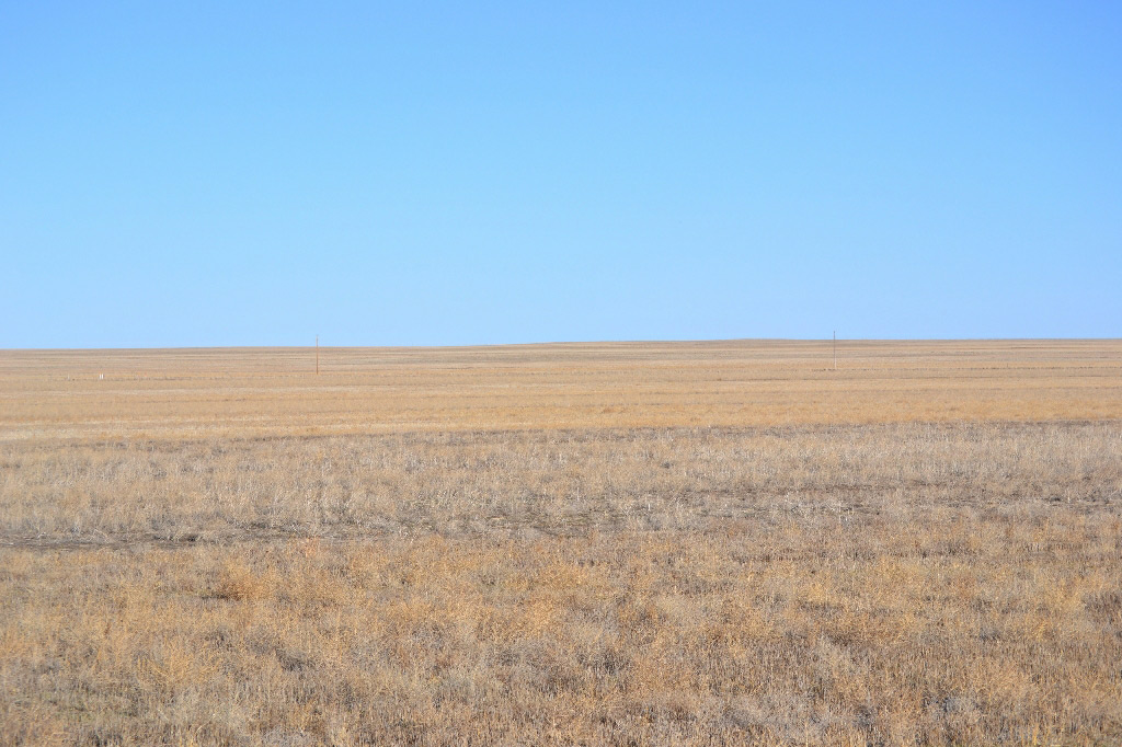 CRP Land for Sale