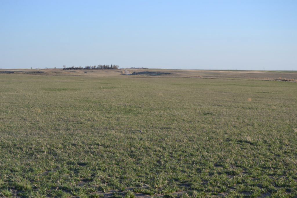 CRP, Nebraska land for sale