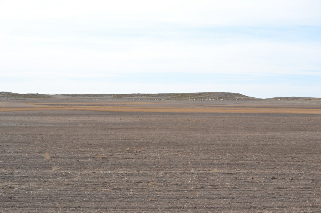 kimball county, nebraska farmland for sale,