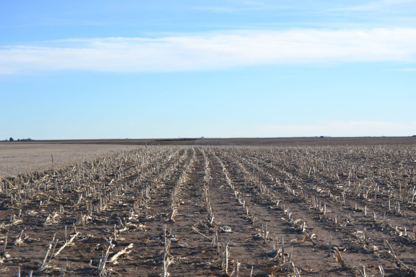 Colorado Dry Farmland for Sale