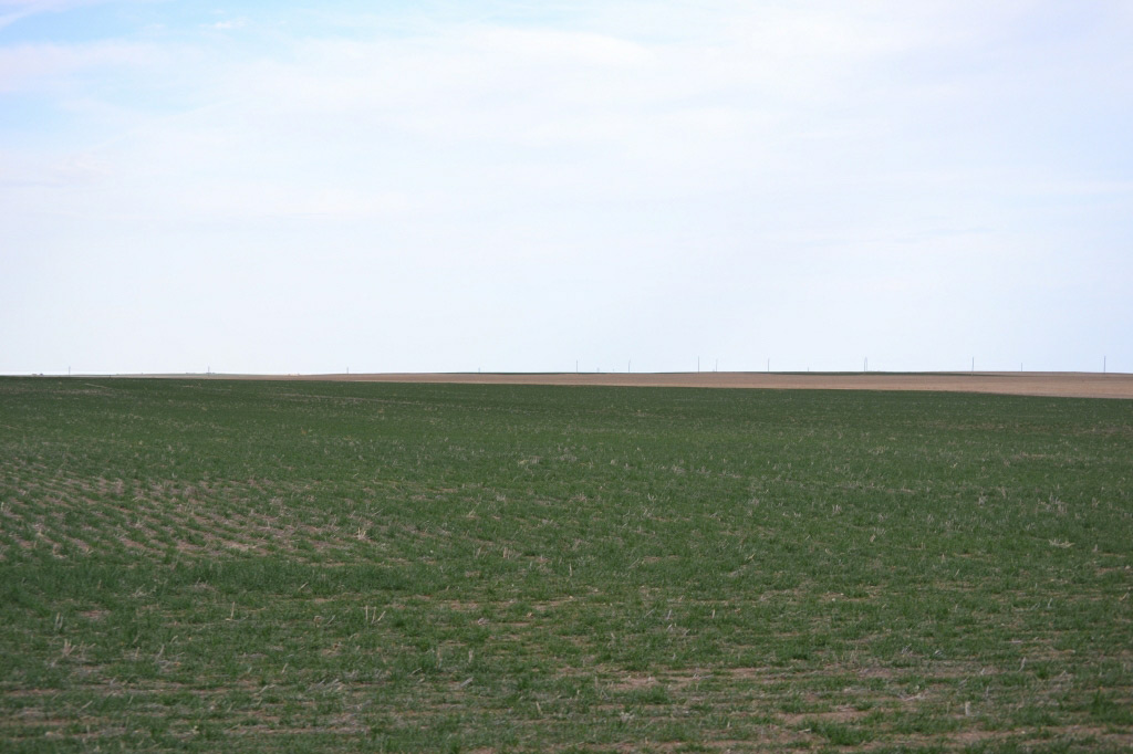 Colorado farmland, wheat ground, hay, millet, reckagri