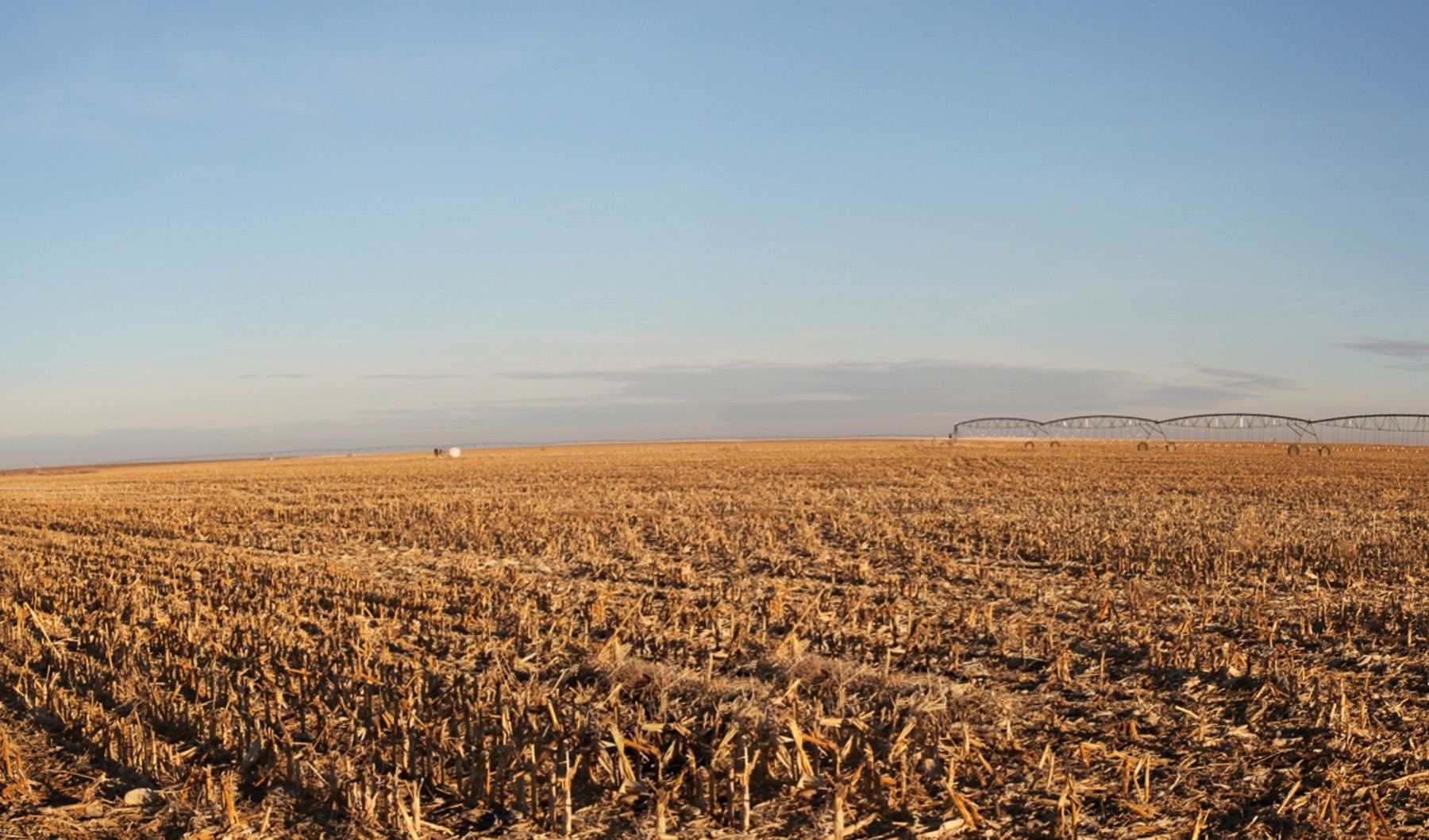 pivot irrigated land in Colorado for sale by auction at Reck Agri