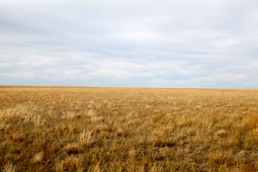 Colorado CRP land for sale in Logan County