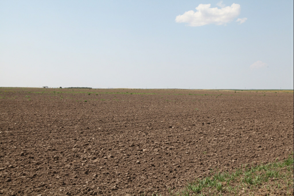 farmland for sale, nebraska, wheat crop, dryland
