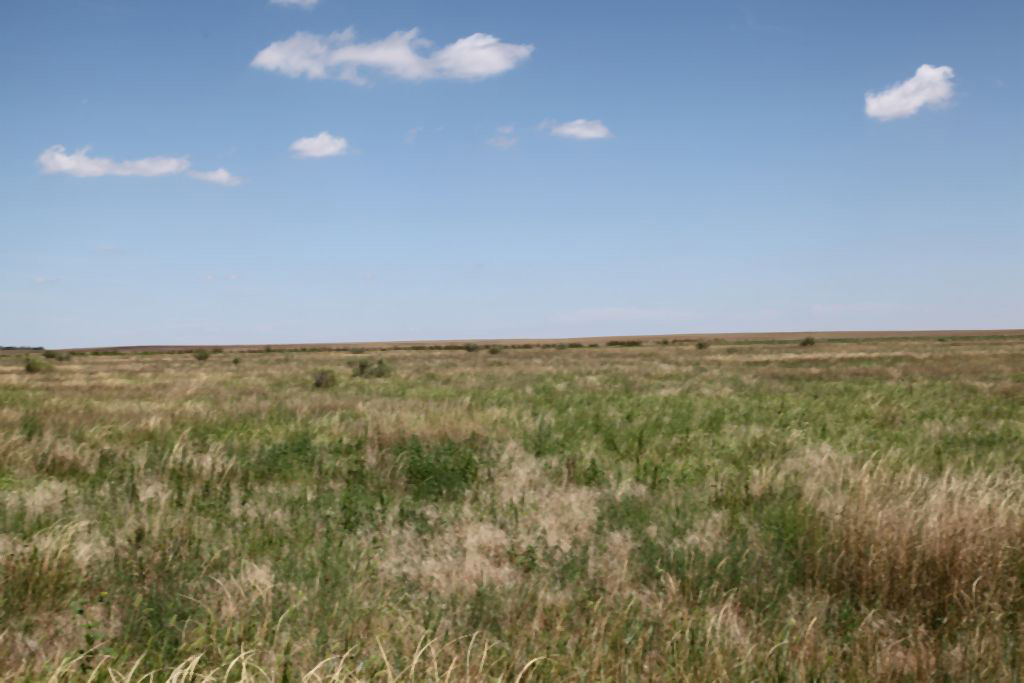 expired CRP in logan county, colorado, reck agri