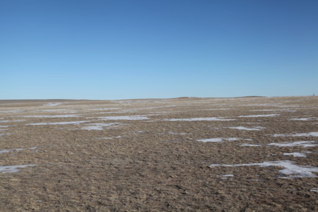 Reck Agri Realty Land Auction, Colorado Dry Land for Sale, Dry Farmland for sale