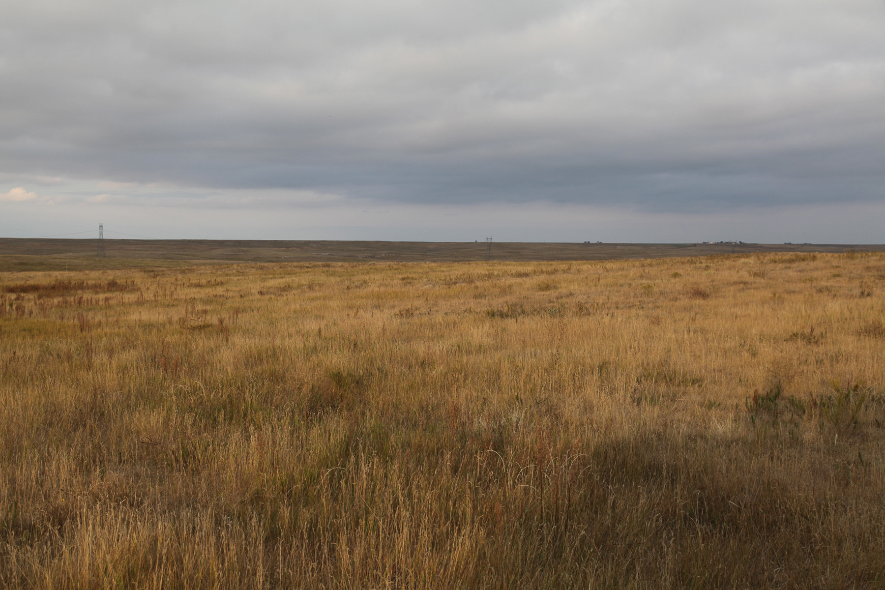 cheyenne county, Nebraska, CRP Pasture for sale