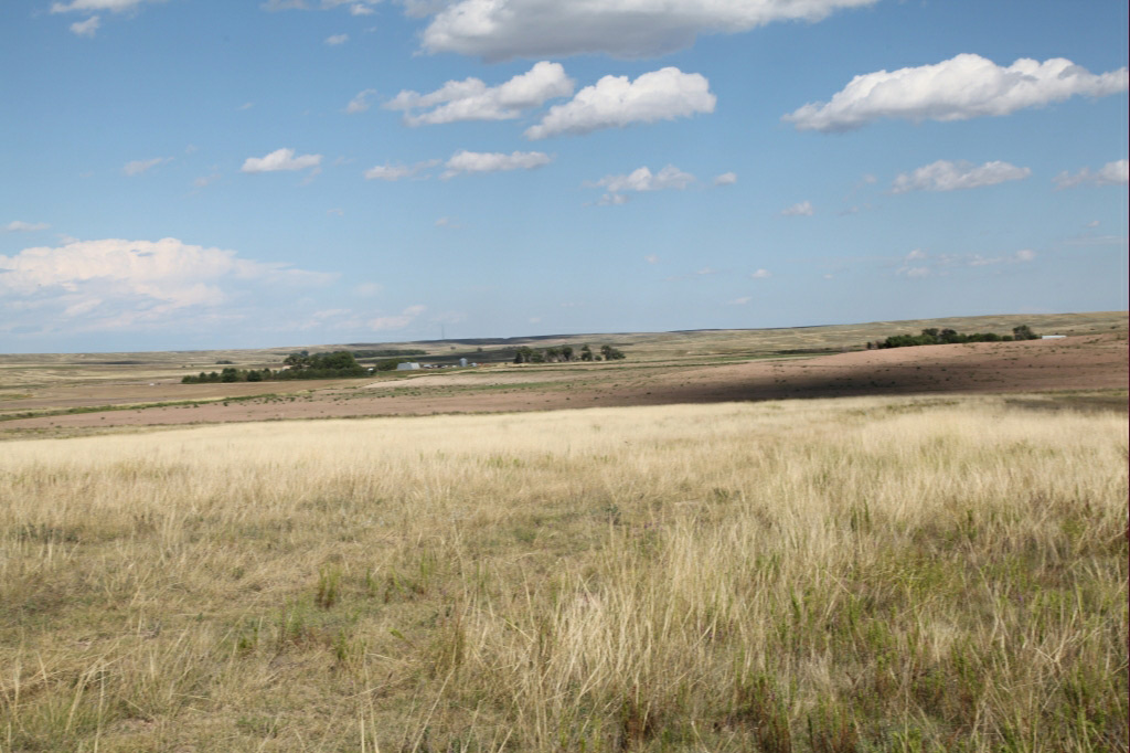 Farm land in Nebraska for sale