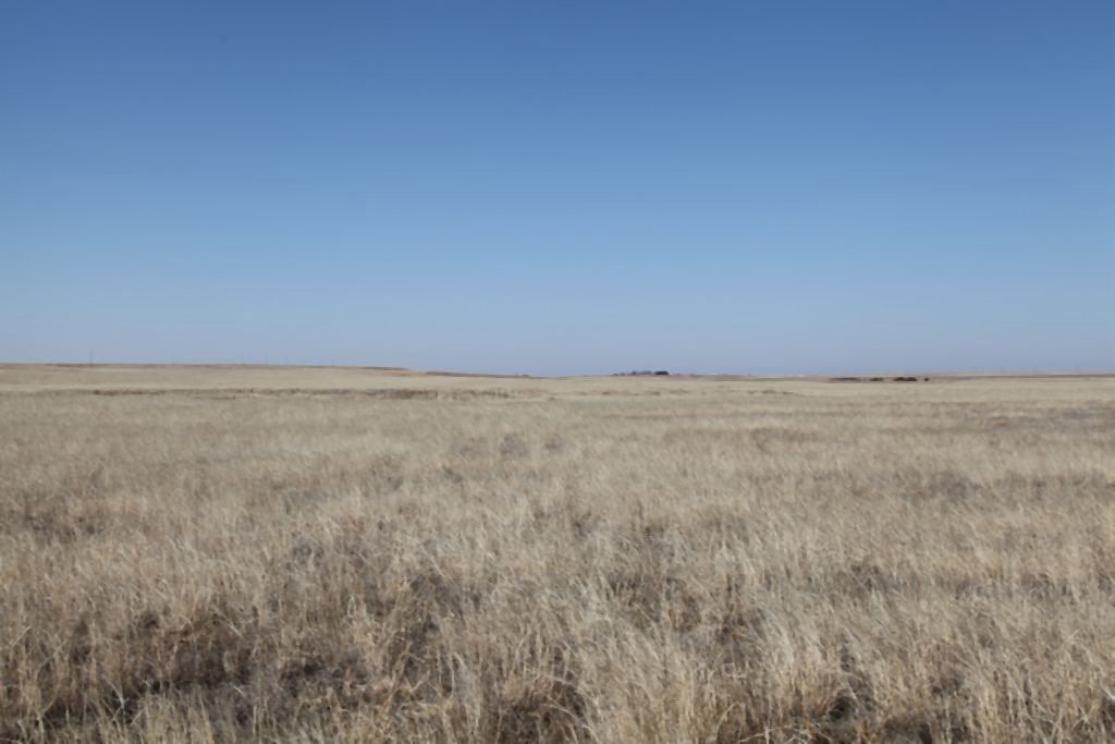 Harry Johnson CRP Land for Sale in Colorado