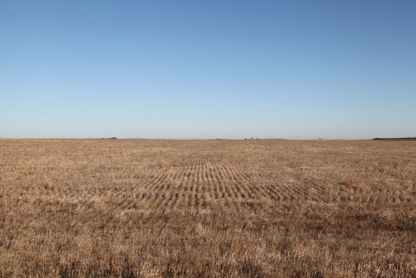 Nebraska Land Auctions, dryland, wheat ground, sidney, ne