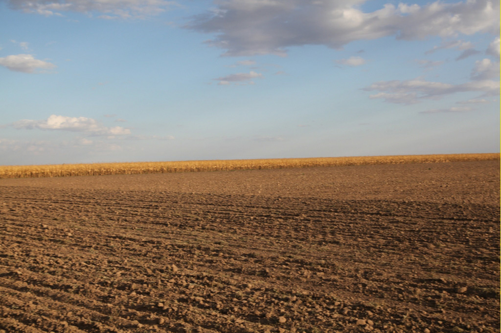 nebraska land auction, reck agri