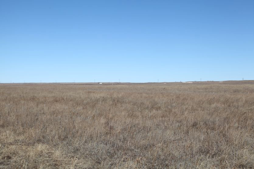Nebraska pasture land for sale