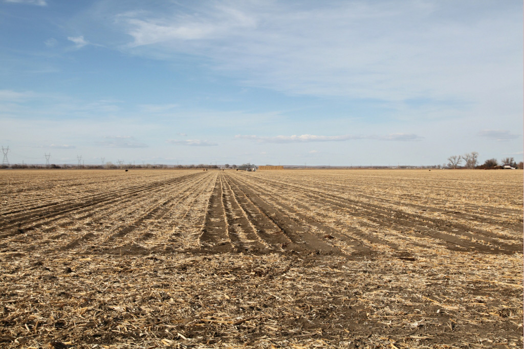 860 acres of Colorado pivot irrigated land for sale
