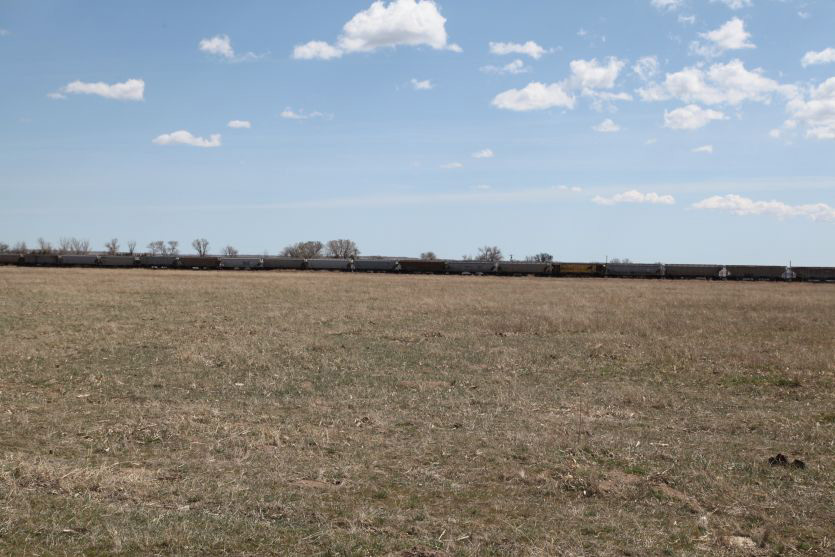 pasture, land, colorado land for sale, grass land, CO cattle farm