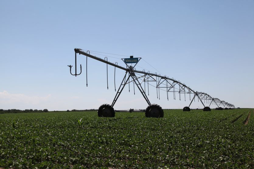 North Yuma County Pivot Irrigated For Sale